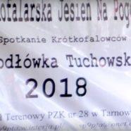Jodłówka Tuchowska 2018